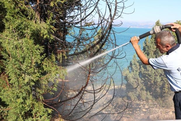 orman yangını2