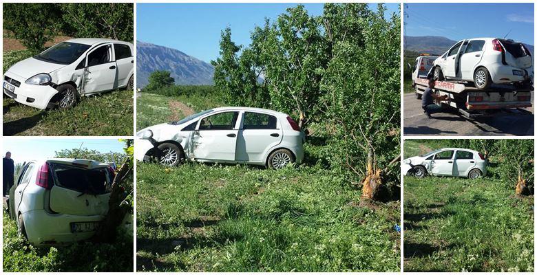 Otomobil elma bahçesine girdi : 5 yaralı