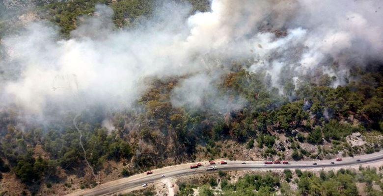 Alev alan otobüsteki yangın ormana sıçradı