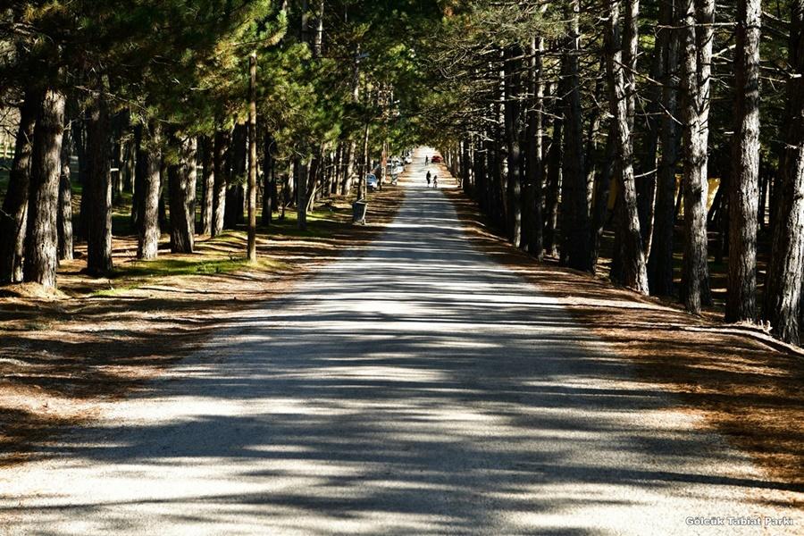 Gölcük Tabiat Parkı: Isparta şehir merkezine 10 Km uzaklıkta olan, piknik ve dinlence yeri olarak kullanılabilecek en gözde yerlerden bir tanesidir.