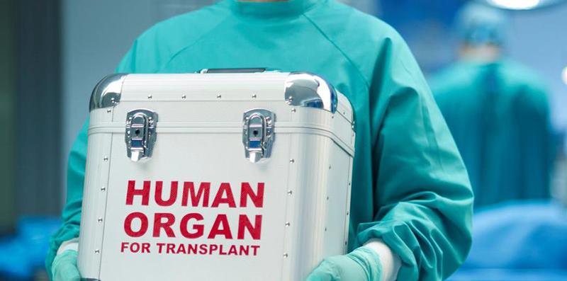 Arif Yunus Emre Altunbaş'ın organları hayat kurtaracak!